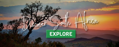 CLICK HERE for South African adventures!