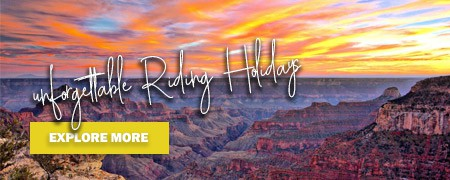 CLICK HERE to explore riding holidays!